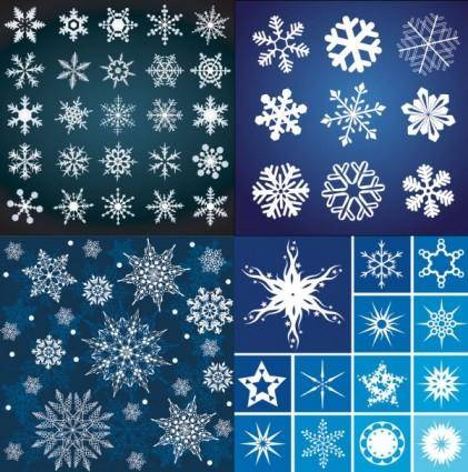 A variety of beautiful snowflake pattern vector