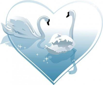 Heartshaped white swan vector
