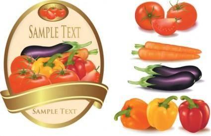 Fine vegetables vector