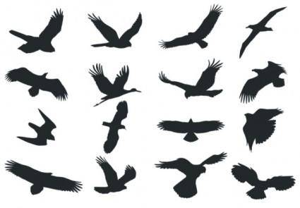 free vector Bird silhouette vector