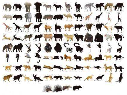 free vector 50 animal models and silhouette vector