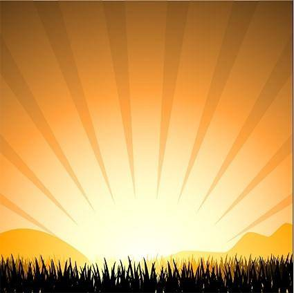 Sunset radiation light elements such as grass vector silhouette