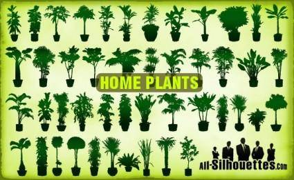 free vector Vector Home Plants Clipart