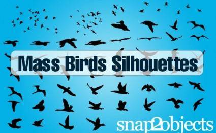 free vector Free Vector Birds
