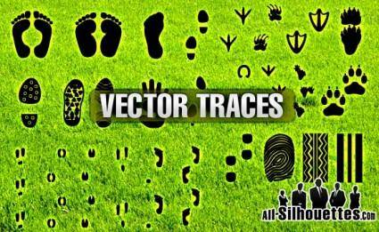 free vector Free Vector Traces