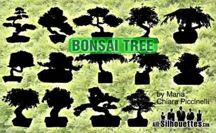 free vector Vector Bonsai Tree