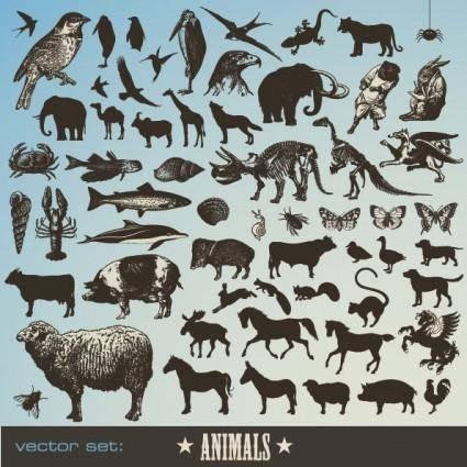 free vector Animals vector