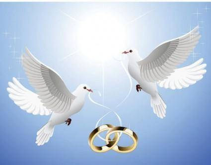 The pigeons on the ring dangling from vector