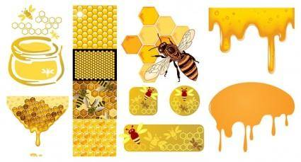 Bee honey honeycomb vector