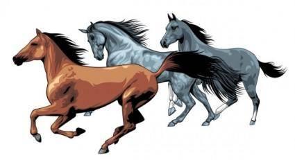 Horse 04 vector