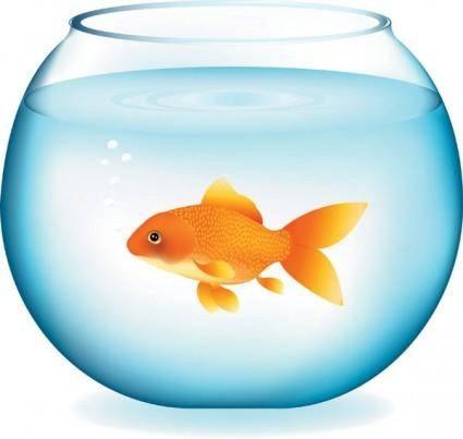 Goldfish vector 2