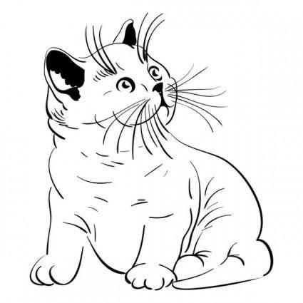 free vector Animal cat 05 vector