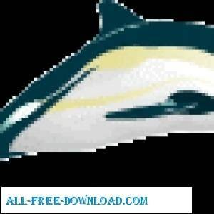 free vector Dolphin