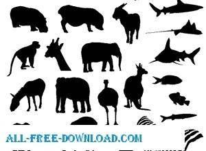 free vector Animal Vectors