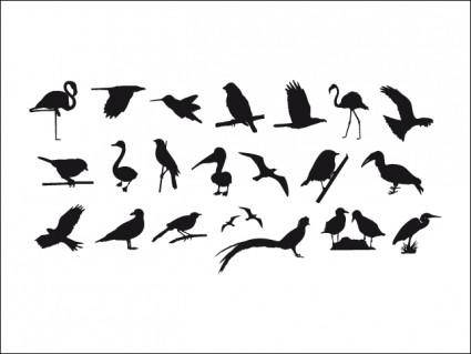 free vector Collection Of Birds Silhouettes