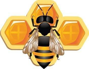 free vector 3d bee and honeycomb vector, bee ai, adobe illustrator bee vector, animal illustrator vector ai, 3d illustrator vector