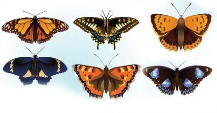 free vector Free butterfly vector