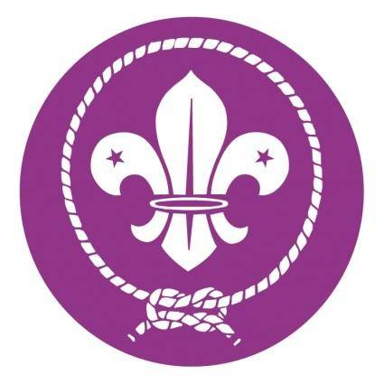 World scout movement