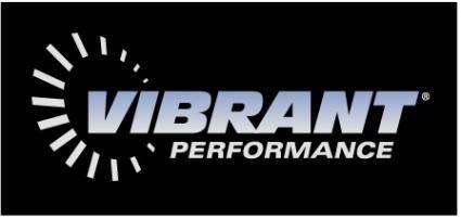 Vibrant performance 1