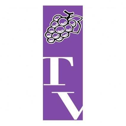 free vector Tiempo de vino