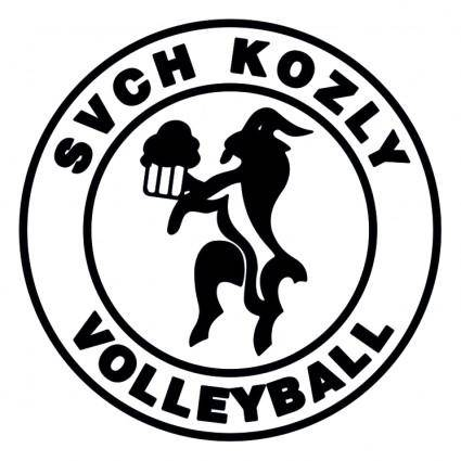 free vector Svch kozly volleyball