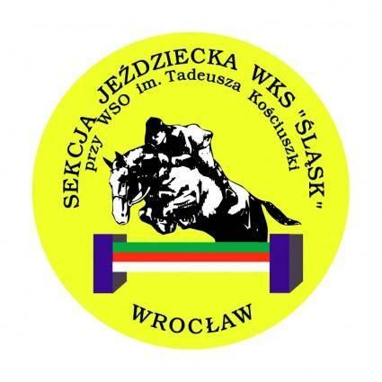 free vector Slask wroclaw 2