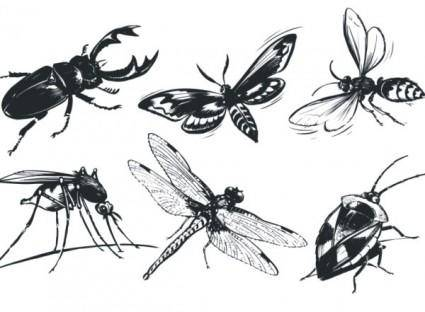 free vector A monochrome insect vector