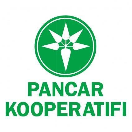Pancar kooperatifi