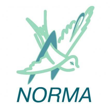 free vector Norma 2