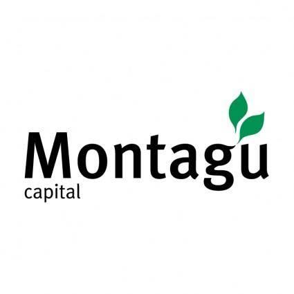 Montagu capital