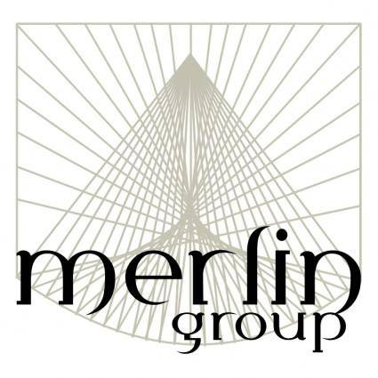 free vector Merlin group