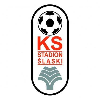 free vector Ks stadion slaski chorzow