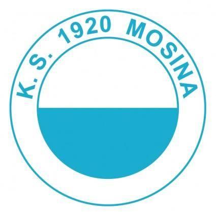 Ks 1920 mosina