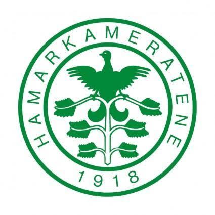 free vector Hamarkameratene