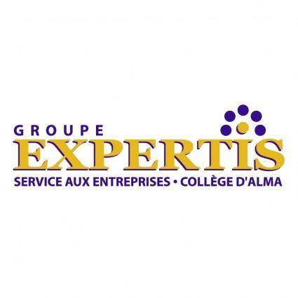 Groupe expertis