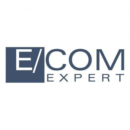 Ecom expert 0