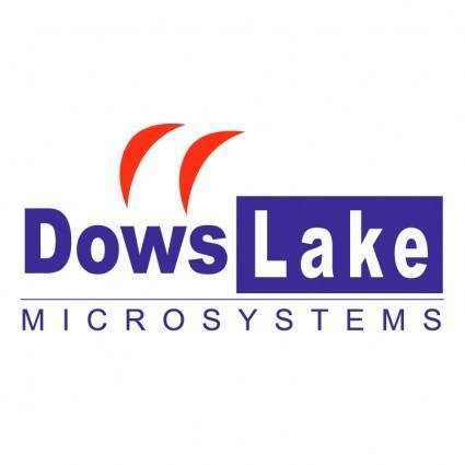 Dowslake microsystems