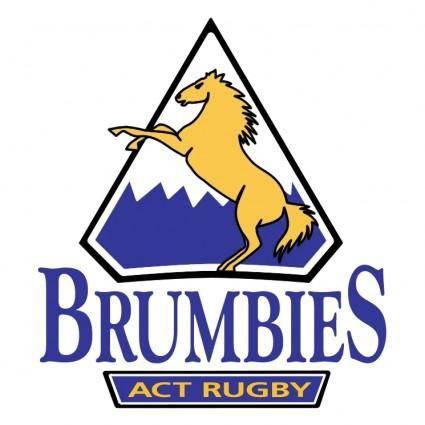 Brumbies 0