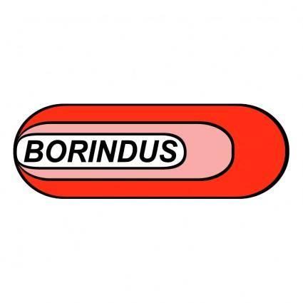 Borrachas borindus