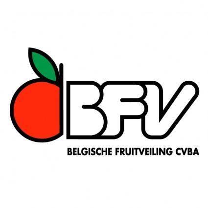 free vector Bfv