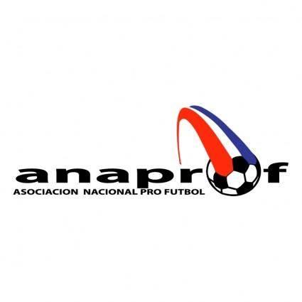 free vector Anaprof panama