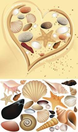 Colorful shell vector