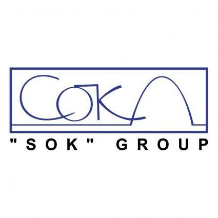 free vector Sok group