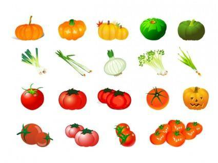 Vector of vegetables