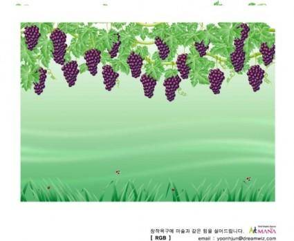 Vines vector
