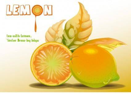 Lemon vector graphics