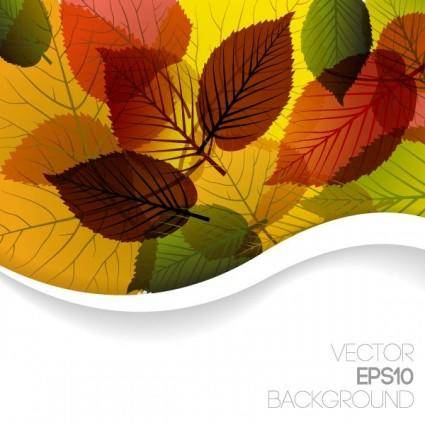 free vector Autumn leaves vector 3 graphic design