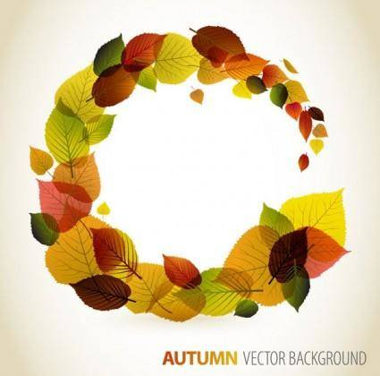 Autumn leaves vector 4 graphic design
