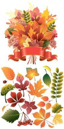 Beautiful autumn leaves vector 4259