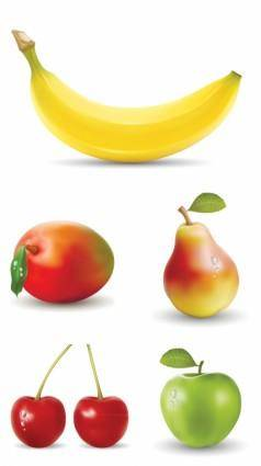 free vector Fresh fruit vector